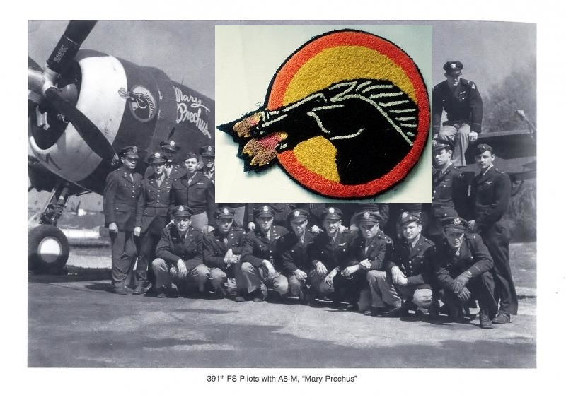 391st Fighter Squadron P-47 'Mary Prechus' (3).jpg