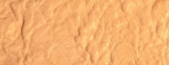 Sand Capeskin.jpg